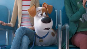 Watch or Download here : http://pickermovie.com/movie/412117/the-secret-life-of-pets-2 iElQWbYMHrS0a